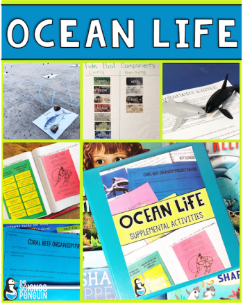 Ocean Life Activities: ecosystem interactions, food webs, traits and behaviors, and adaptations