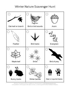 Winter nature scavenger hunt (nature bingo) to do outdoors during winter. A fun game to play during the cold months.