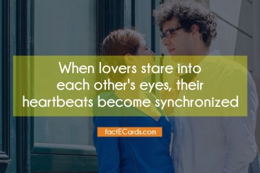 When-lovers-stare-each-others-2620