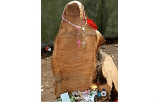 A chunk of wood that people think is the Virgin Mary