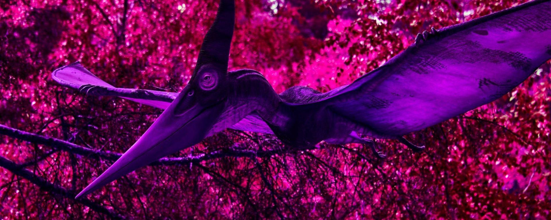 Pterosaur-The Scientific Triangle
