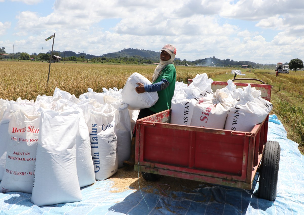 $3.9M Imang Dam upgrade to improve irrigation supply, boost rice output