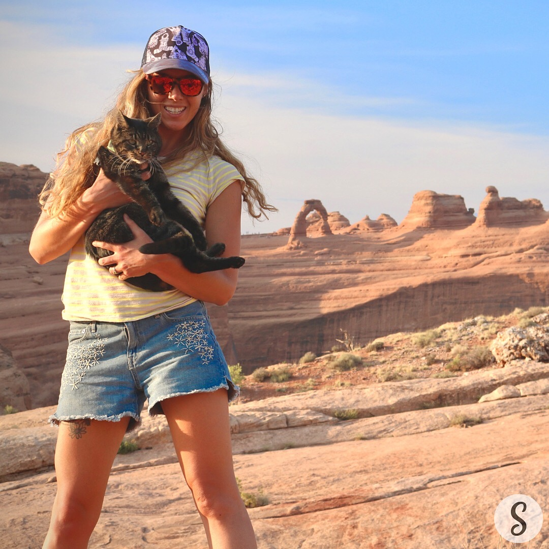 5 Must-haves for pet travel!