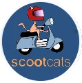 scoot cats