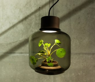 nui studio scout life plantlamp 2