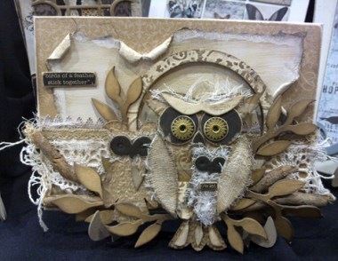 Collections Owls