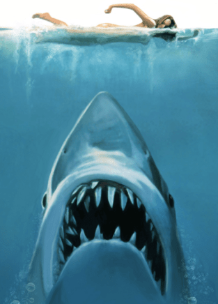 0604jaws