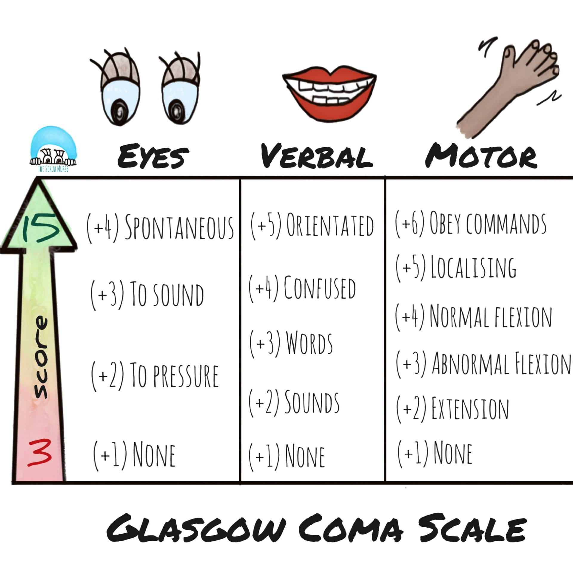 Glasgow Coma Scale Are You Ok