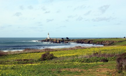 Wild flowers and beautiful vistas as we drive up the coast