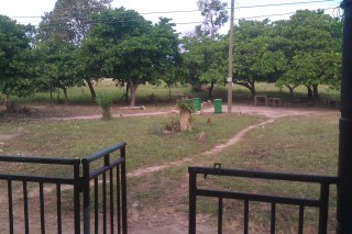 The view from my porch. You can the bins of the school (when or if they get used) and the electricity poles and the night light pole that lights up the compound at night for security. The chairs and tables under the trees is where students buy food in their breaks.