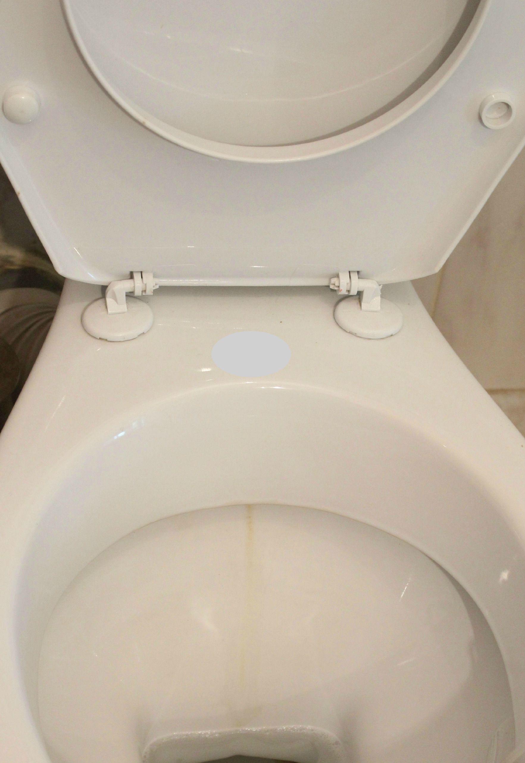 toilet cleaner alternative