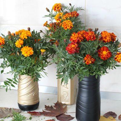 Gorgeous plastic bottle flower vase