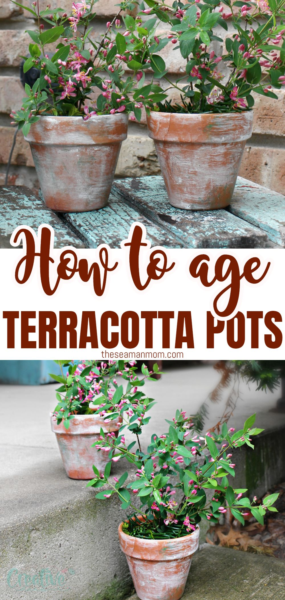 Bring a little vintage to your home decor with a couple of distressed, white washed terracotta pots. These aged terracotta pots are so insanely easy to make you'll find yourself whipping up a bunch of these in just a matter of minutes! In this tutorial you'll learn how to make terracotta pots look old in just a few easy, simple steps! via @petroneagu