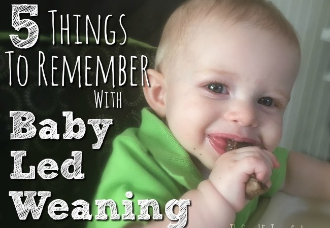 5 Things to Remember With Baby Led Weaning
