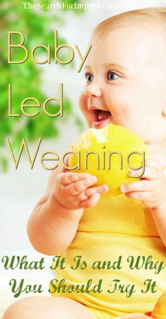 Baby Led Weaning, What It Is and Why You Should Try It