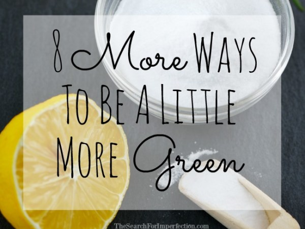 8 Tips on How to Be More Green