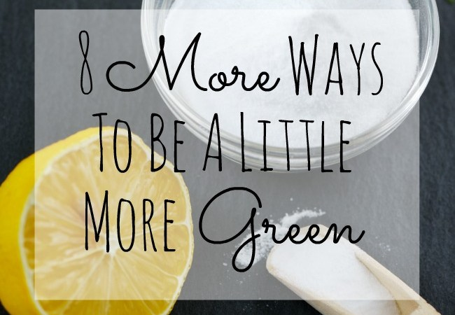 8 MORE Tips on How to Be More Green – Easy Ways to Be Kind to the Environment