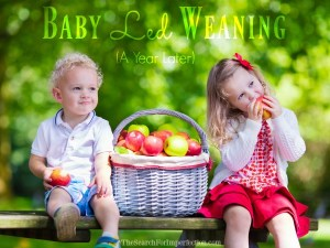 Baby Led Weaning, How it's gone after a year.