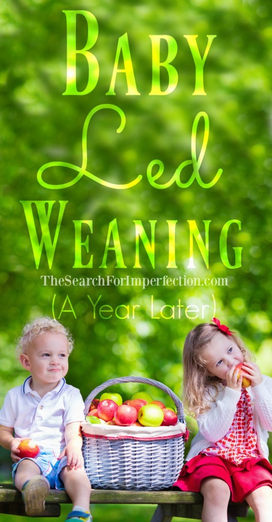 Baby Led Weaning and how it's gone after a year.