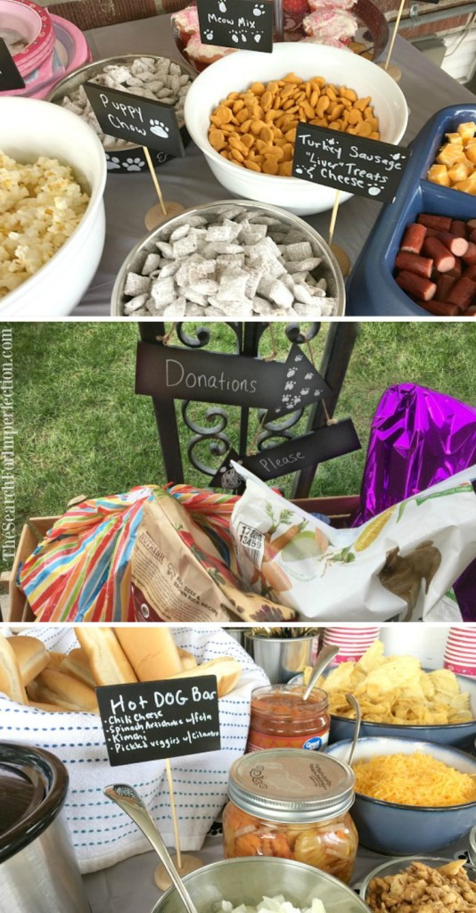 How to throw an Animal Shelter Donation Party, and why you should try it!