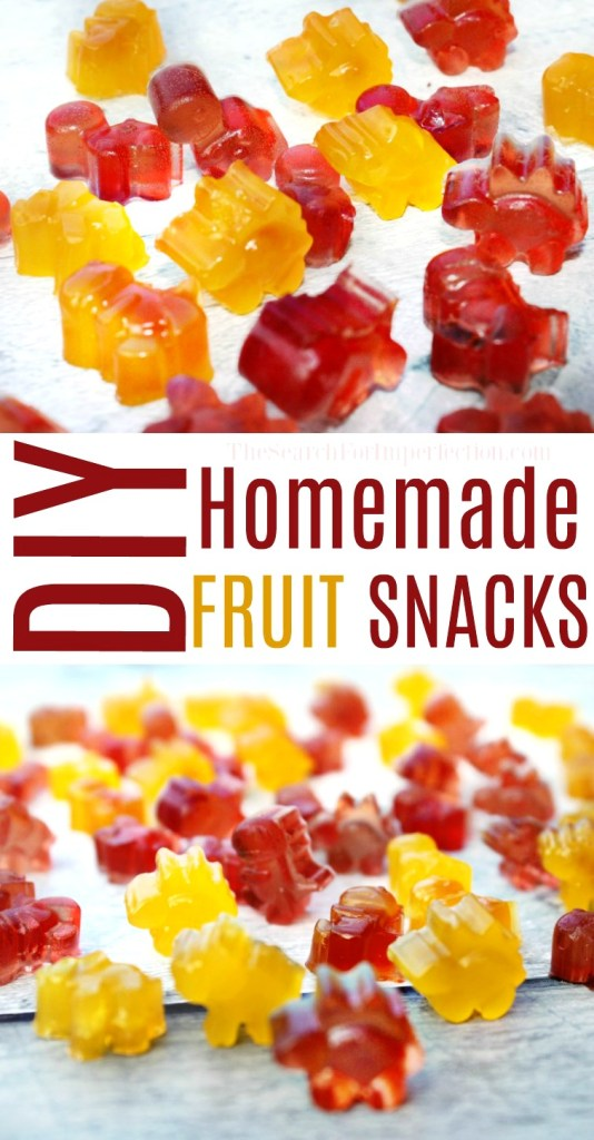 I can't wait to make these DIY Fruit Snacks for the kids' lunches!