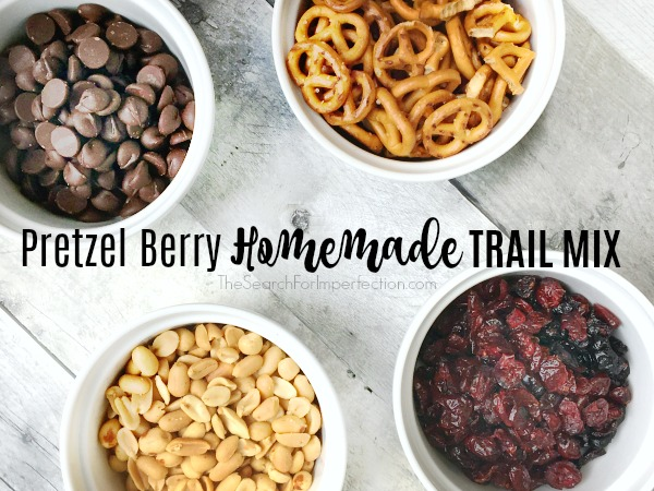 Super Easy Pretzel Berry Homemade Trail Mix