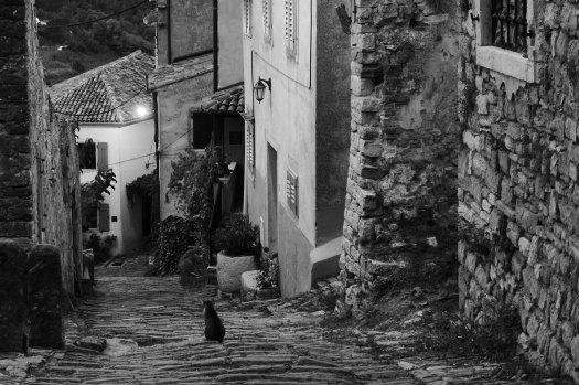 13_Motovun Istria