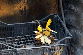 Gold leaf in grate.