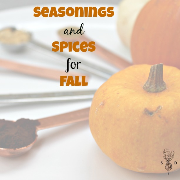 Seasonings and Spices for fall