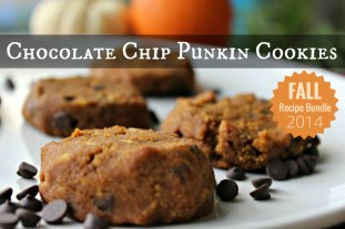 Chocolate Chip Punkin Cookies