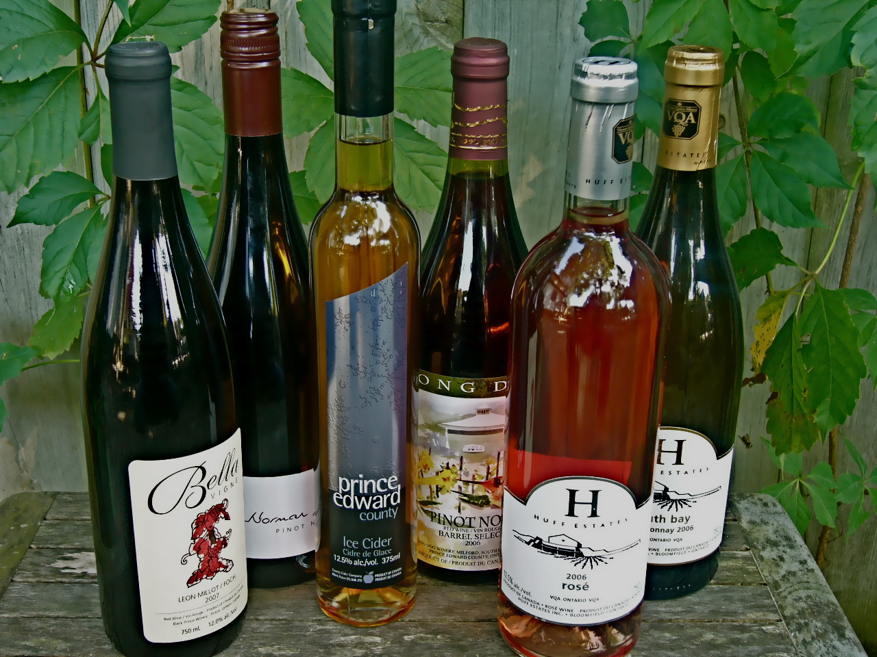 A selection of Prince Edward County wines