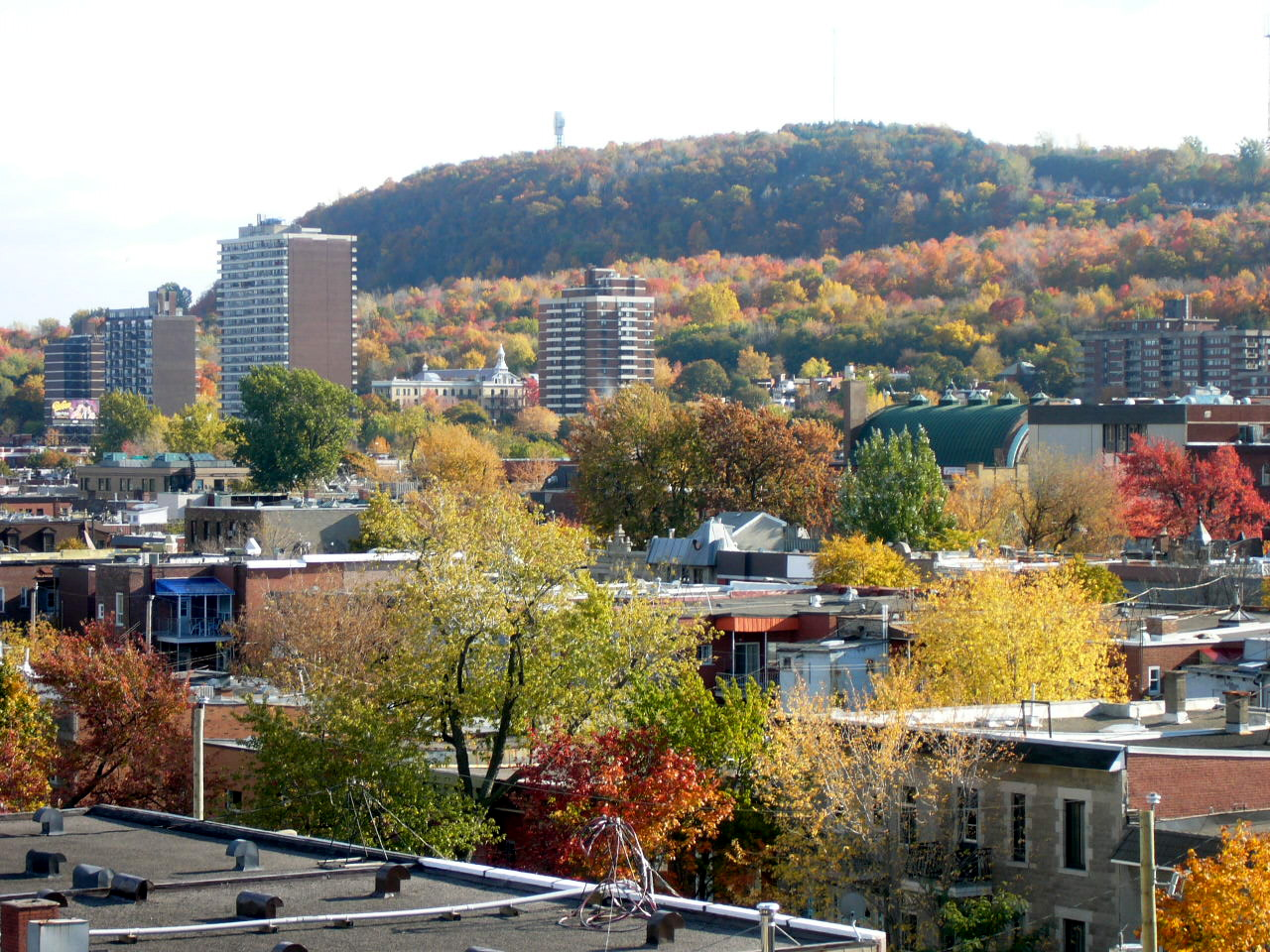 Mount Royal, from a rooftop on St. Laurent Boulevard