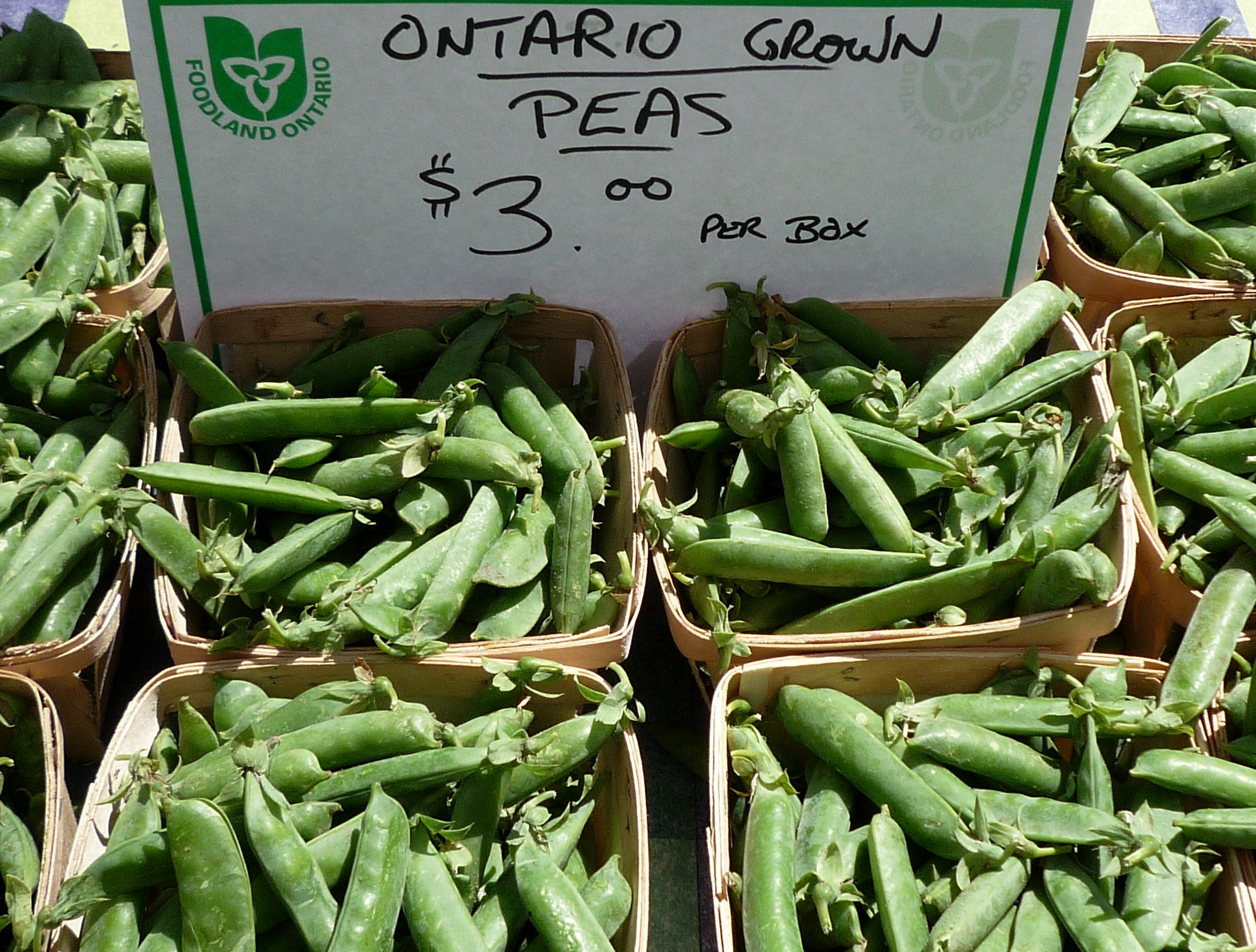Sweet local peas are at their peak in July