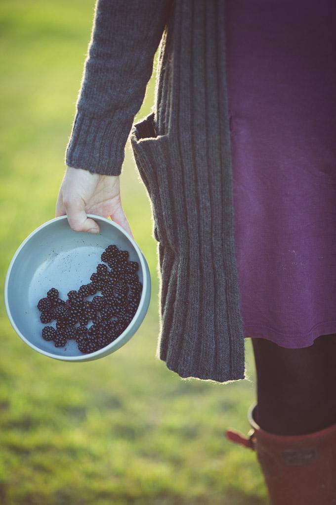 Wild Blackberry and Rosewater Cake -- blackberry recipes | https://theseasonaltable.co.uk/sweet/wild-blackberry-and-rosewater-cake/