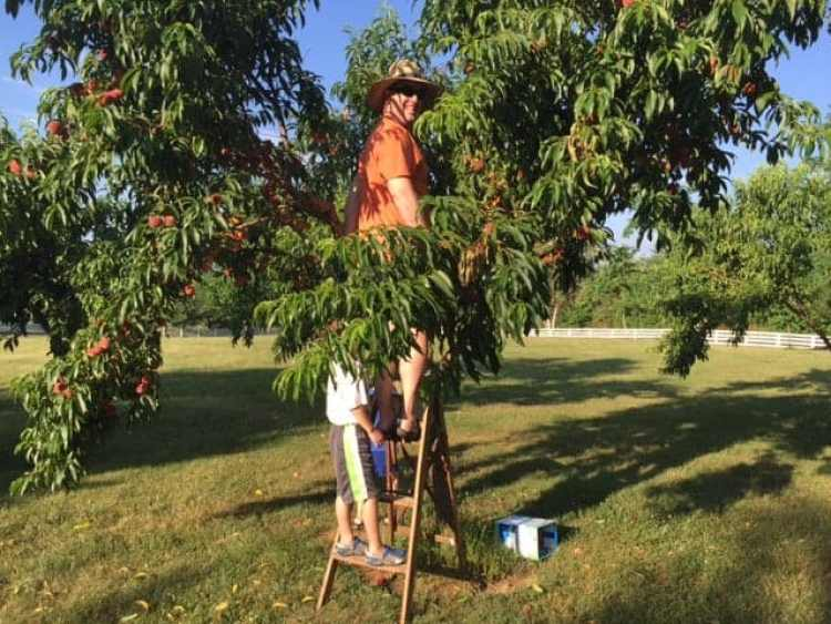 Keith and Boys with Peach Trees