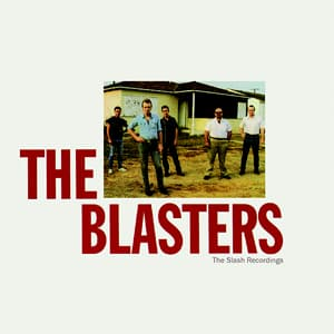 Blasters Wounded Bird