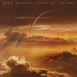 david sancious forest