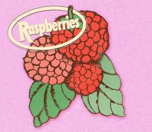 Raspberries - Classic Album Box Set