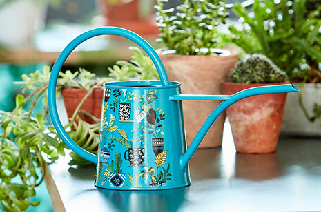 Indoor plant watering can design by Brie Harrison by Burgon and Ball