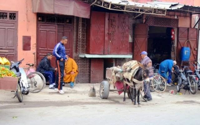 Wandering the medina in Marrakech