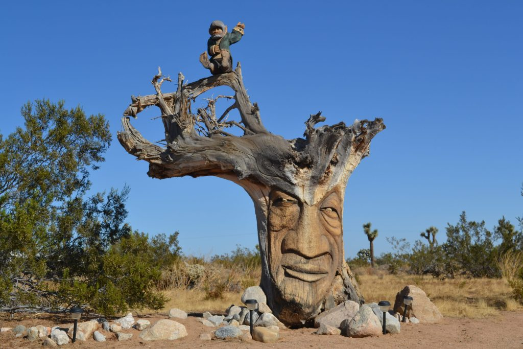 Joshua-Tree-National-Park-The-Secret-Tour-Treebeard-Groot-Ent