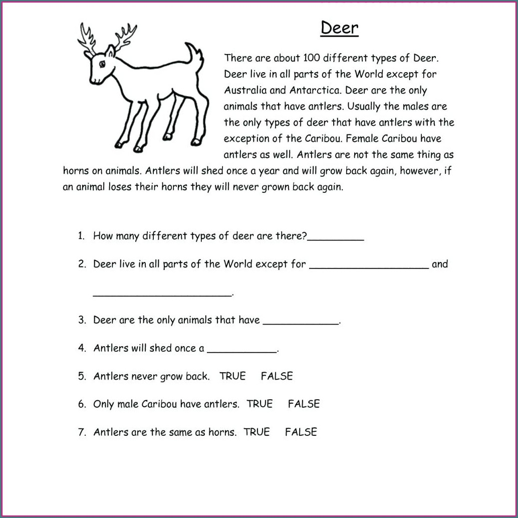 Handwriting Worksheet Maker Download Worksheet Resume