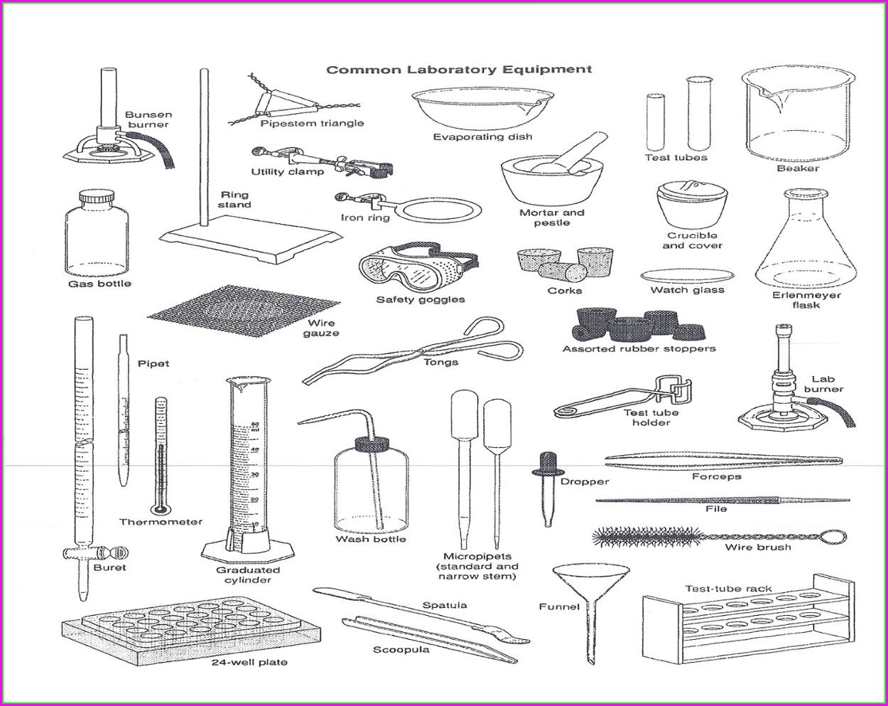 Unscramble Science Words Worksheet Worksheet Resume Examples