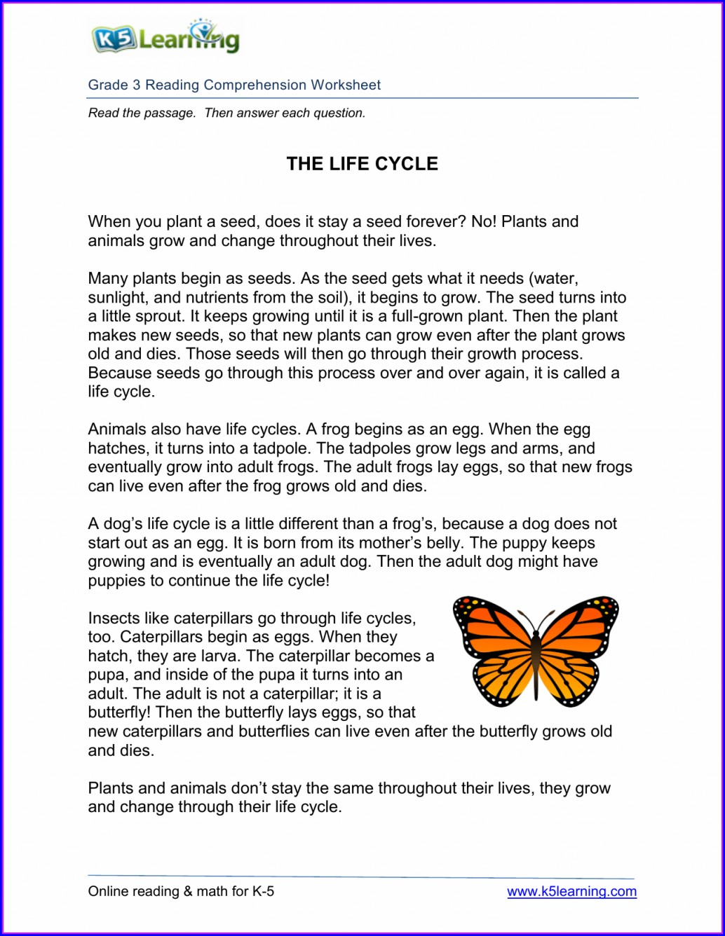 Preschool Life Cycle Of A Butterfly Worksheet Free