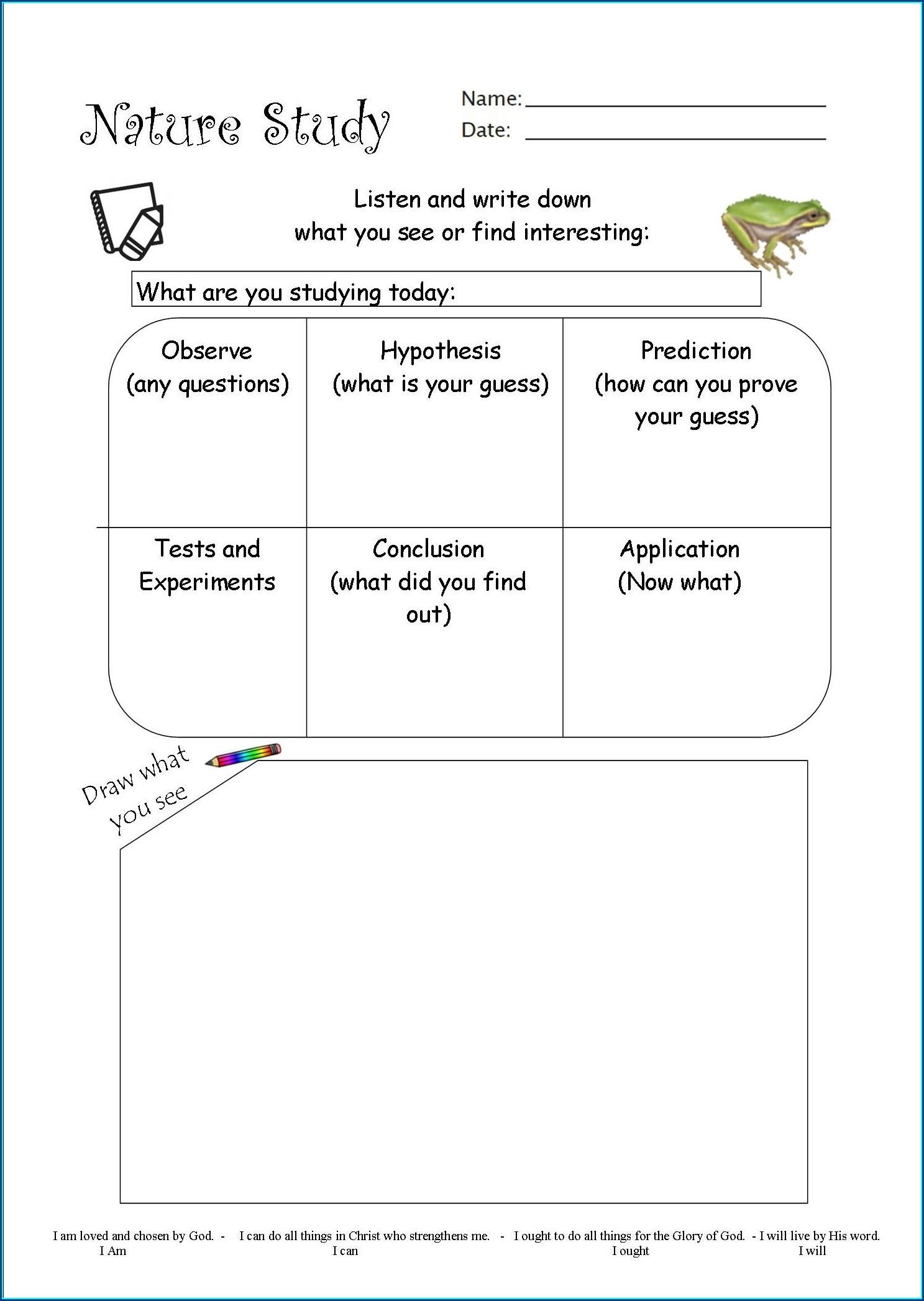Experimental Scientific Method Examples Worksheet