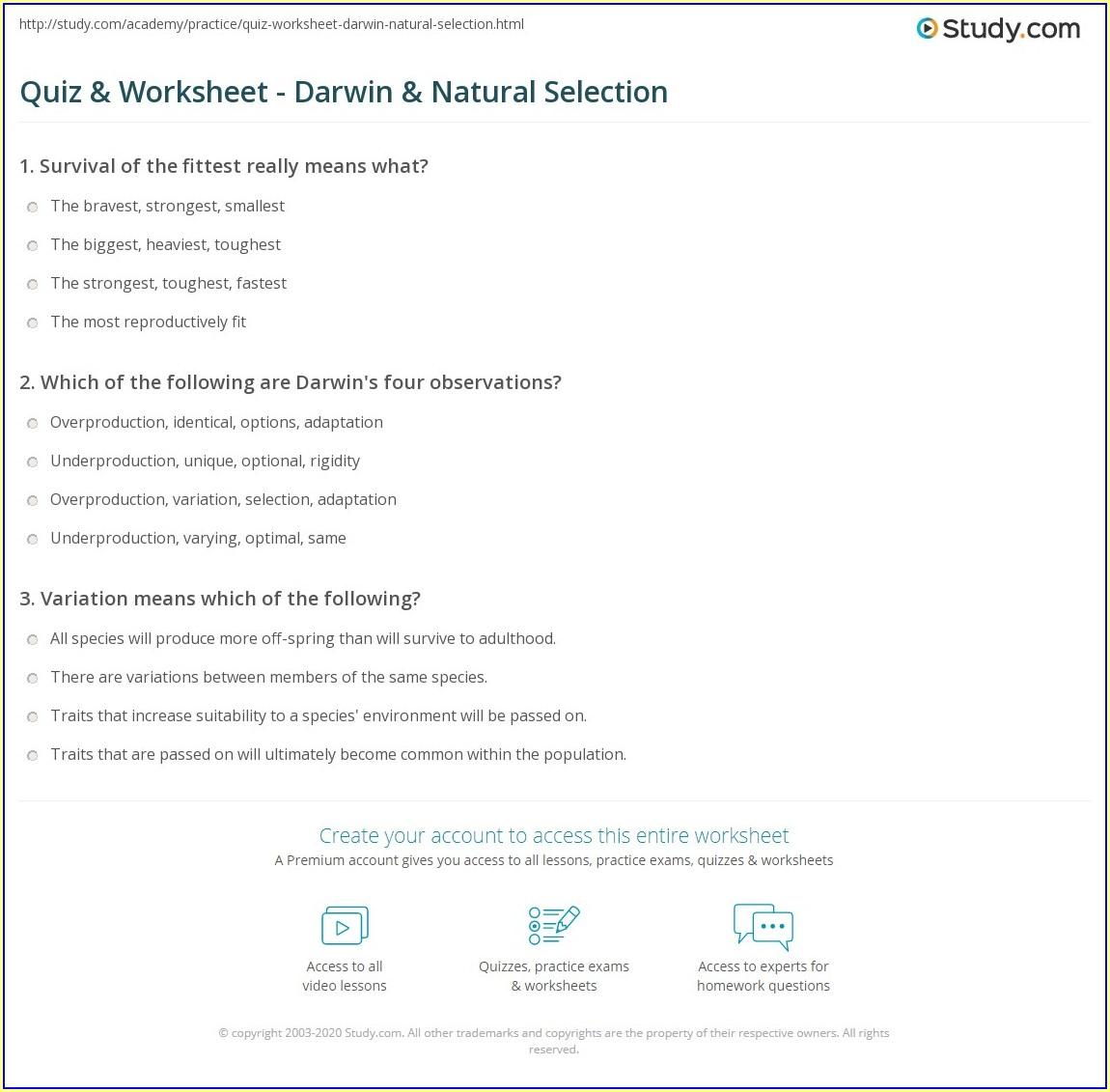 First Grade Worksheets On Natural Resources Worksheet