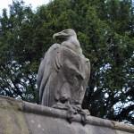 Cardiff animal wall vulture