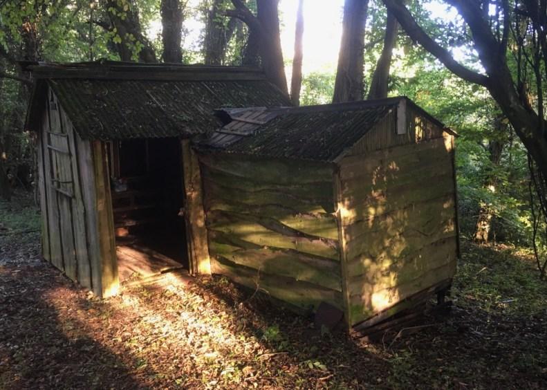Tam Black shack