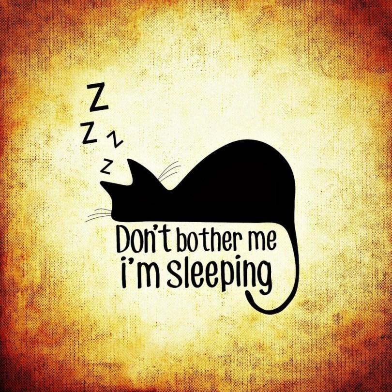 sleeping-morning-1024x1024