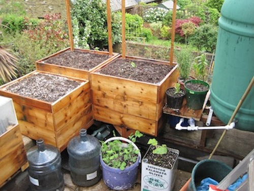 Cheap Vegetable Garden Box